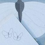 monatskarte_butterfly